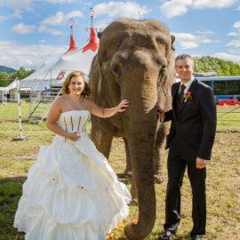 Hochzeitsbilder Brautpaar 14